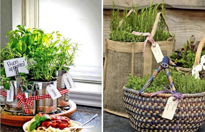 Ideas para cultivar plantas aromaticas en el hogar