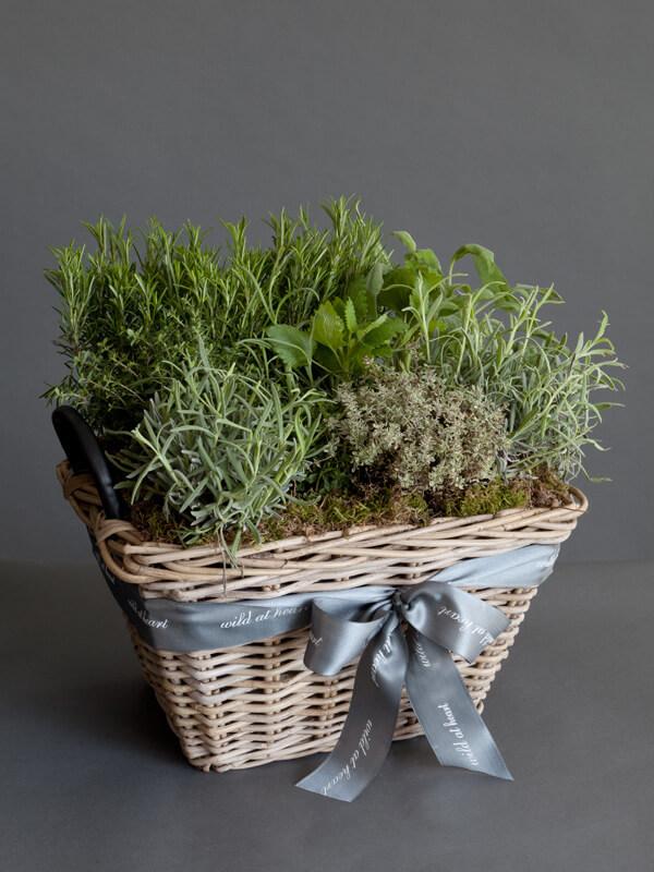 Plantar hierbas aromaticas en canastas