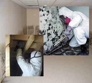 Eliminar la humedad del armario - Humedad en casa ...