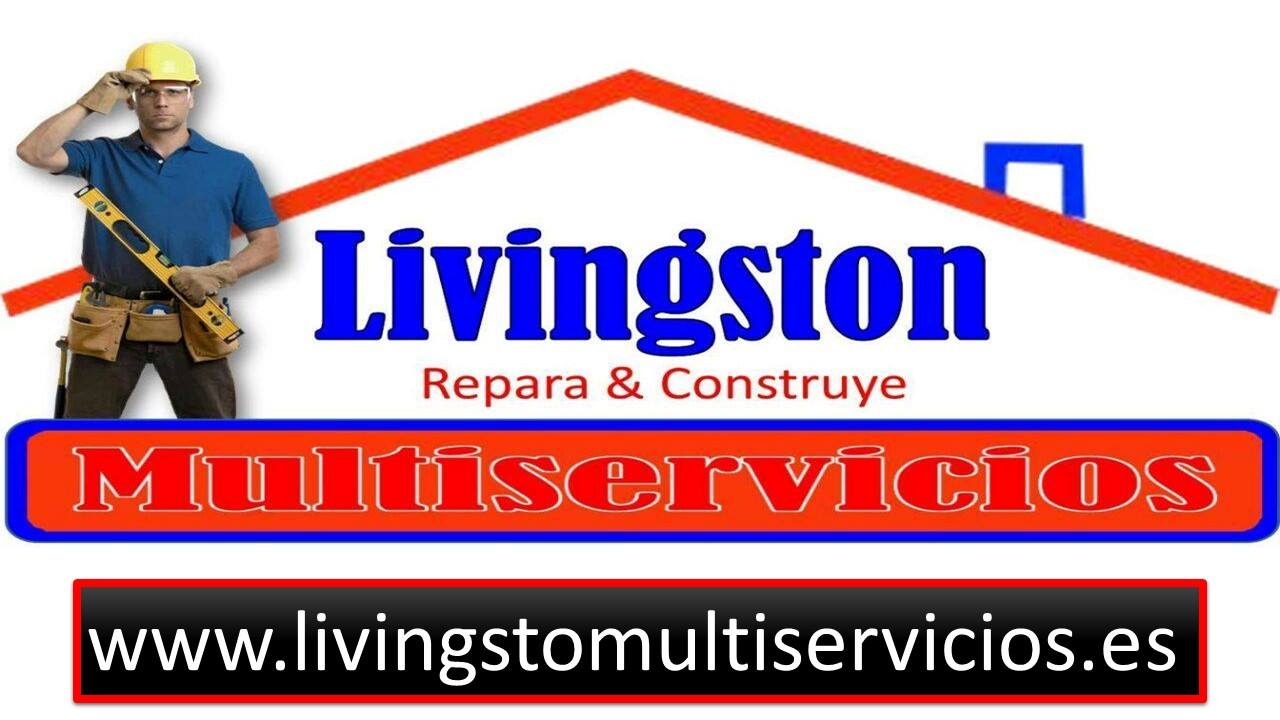 LIVINGSTON MULTISERVICIOS